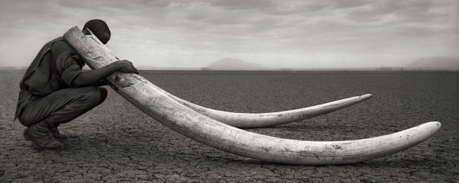 photo: Wikipedia- Nick Brandt
