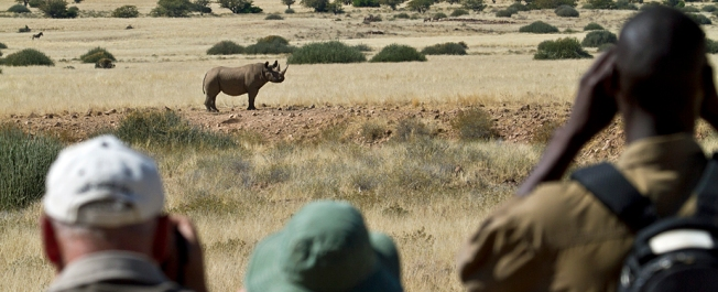 One Black Rhino May Help Save All Of The Rest